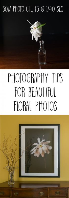 Quick tutorial on lighting for Floral Art Photography showing how to photograph against a black background with a comparison of the effects different bulbs. Great way to diy art for your home decor.