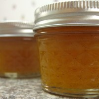 {Canning Can Be Quick} A recipe for Cantaloupe Jam