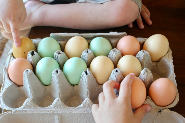 Colored Egg Play. Boys helping in the kitchen.