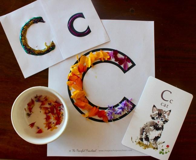 letter c preschool unit