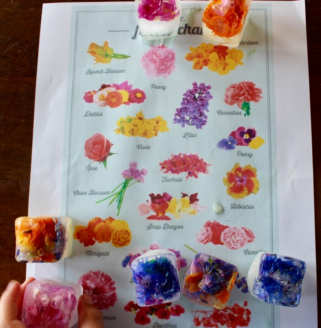 edible flower matching