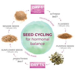 This image has an empty alt attribute; its file name is Seed-Cycling-for-hormonal-balance-01-300x300-1.png