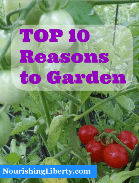 Growing a garden is fun fun fun! Here are 10 great reasons to start!