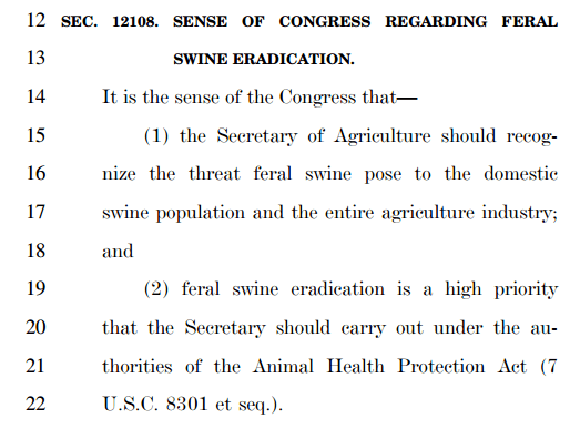 The Farm Bill addresses... feral swine? (Pg. 891 of the farm bill)
