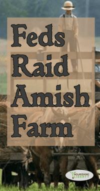 Feds Raid Amish Farm... whatever for?