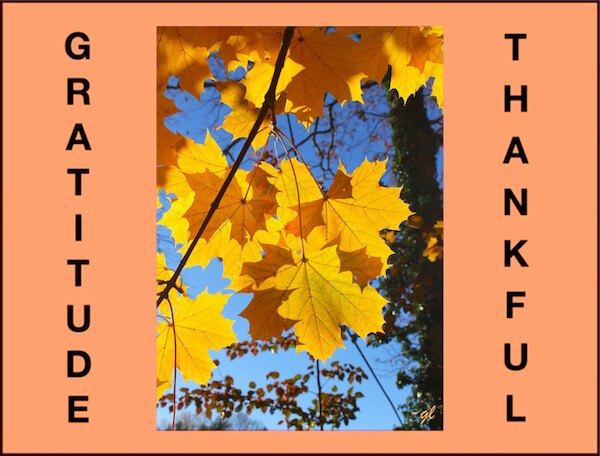 Gratitude–Is It Seasonal?