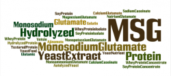 MSG word cloud