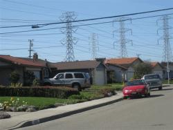 EMF Neighborhood