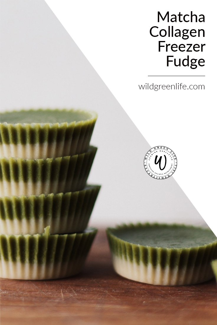 freezer fudge