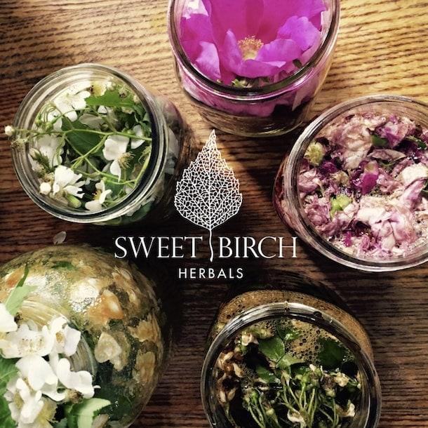 Sweet Birch Herbals Vegetarian Restaurant Near Me Nourish