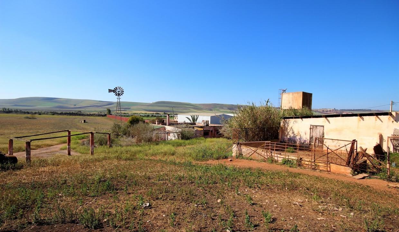 a-vendre-ferme-d-une-superficie-4-2-hectares-013