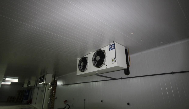 unite-industrielle-moderne-de-stockage-froid-et-de-distribution-a-vendre-location-possible-008