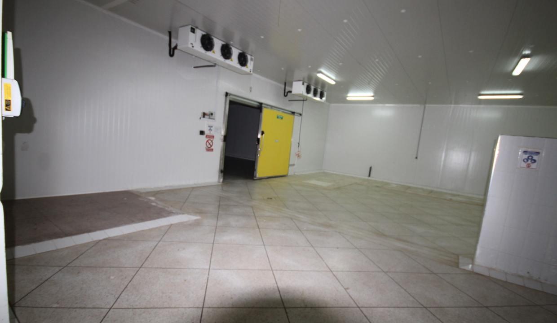 unite-industrielle-moderne-de-stockage-froid-et-de-distribution-a-vendre-location-possible-018