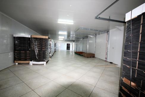 unite-industrielle-moderne-de-stockage-froid-et-de-distribution-a-vendre-location-possible-024