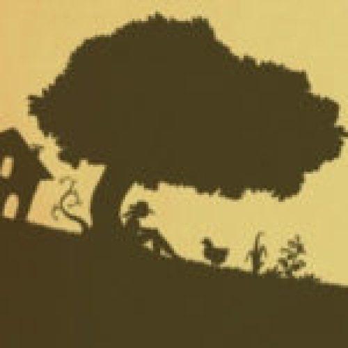 Permaculture, agroécologie, etc...