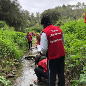 Estrena de la neteja ecològica a la riera de Vallvidrera