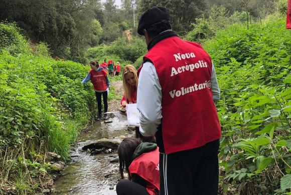 Estreno de la limpieza ecológica en la riera de Vallvidrera