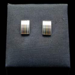 Stainless Steel Earrings with Silver, 18k Gold and 14k Rose Gold (ER100)