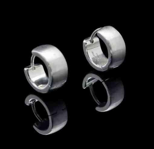 Stainless Steel Earrings Brushed Finish (ER92 lg-re)