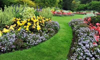New FLOWERS Campaign Highlights Importance of Garden Safety