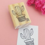 Carimbo cactus (Coleção Ivy Larrea)