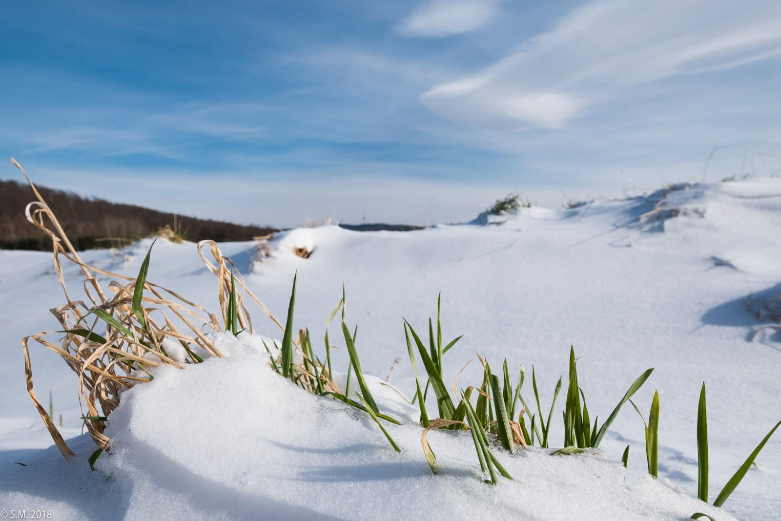 Beuster_Winter (1 von 26)