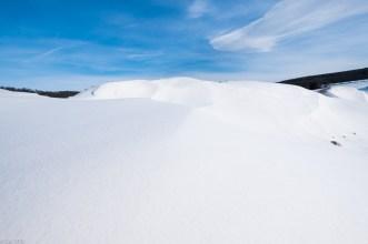 Beuster_Winter (12 von 26)