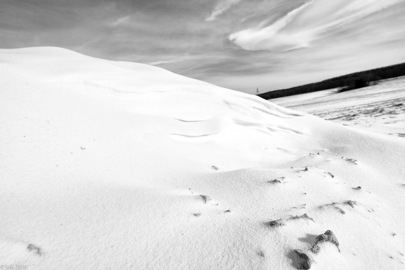 Beuster_Winter (15 von 26)
