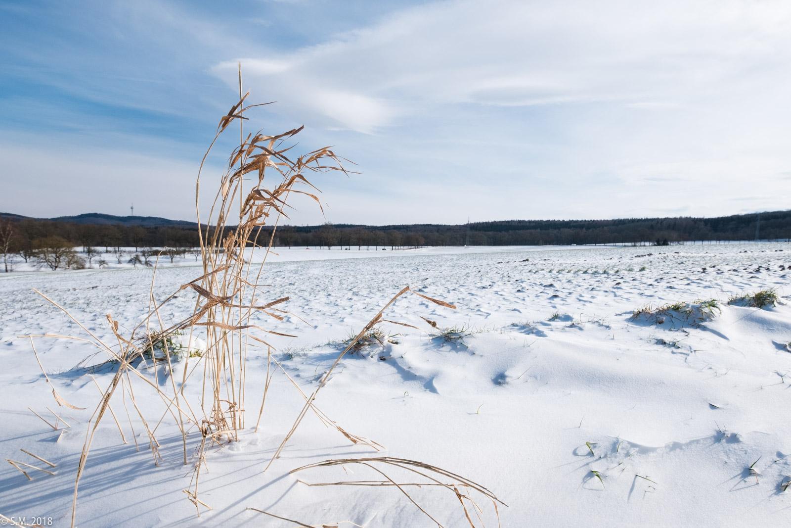 Beuster_Winter (2 von 26)