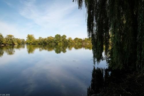 Koldinger See (8 von 29)