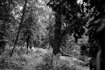 Wrisbergholzen (42 von 58)