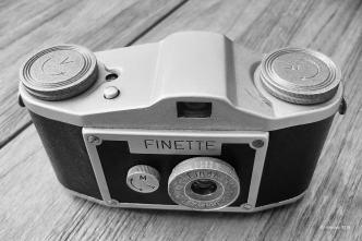 Finette-2516_Höchst_ 17