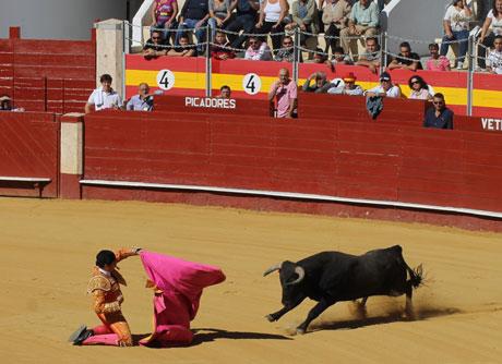 José Cabrera recibiendo un toro a portagayola.