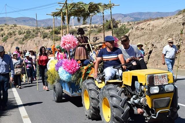 Un tractor llevó la imagen del Santo desde Gádor hasra la zona recreativa de Paulenca.