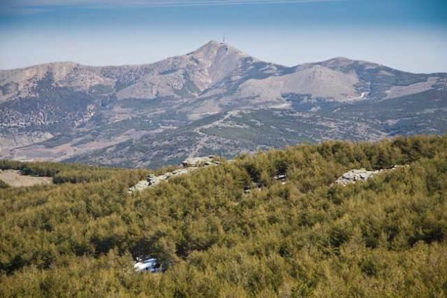 La Tetica de Bacares, una de las cumbres más emblemáticas de Los Filabres.