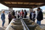 La Asociación Ángel Aguilera Alférez recupera el 'Pozo del Alcalde' y sus lavaderos en Los Baños de Guardias Viejas