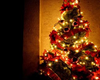Beautiful-Christmas-Tree-Wallpapers-2