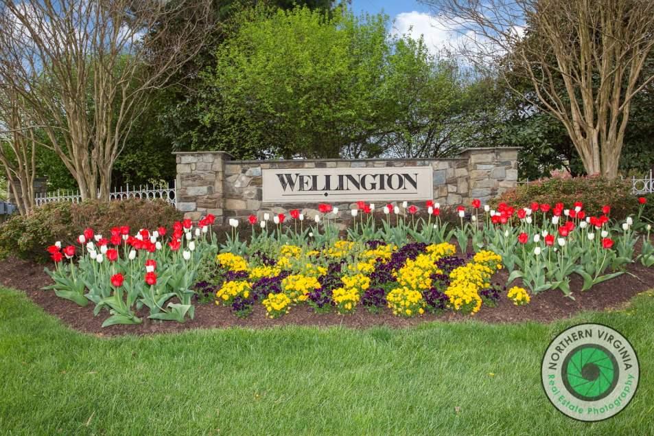Wellington Community - Manassas, VA