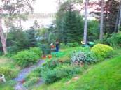 Days in the Garden