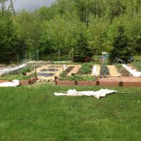 My top ten steps for starting a new veggie bed...maybe it will help a few dreamers?