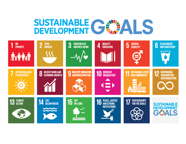Global Goals in Synergy with Novasutras Movement Goals