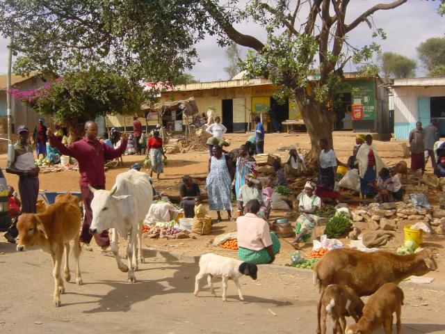 "Wisaka [CC BY-SA 4.0 (https://creativecommons.org/licenses/by-sa/4.0)] The image shows a market place in Africa, at ujiji village in Tanzania. This market in swahili term is called 'mnada"" and takes place once a week."