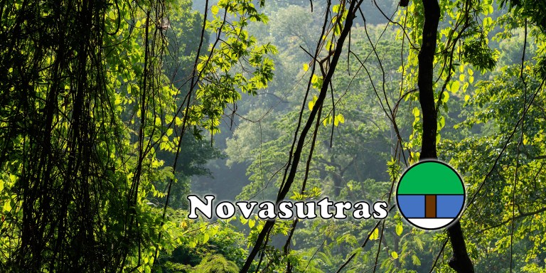 Earth's Three Green Hearts: Equatorial Rainforests and Working to Heal Them