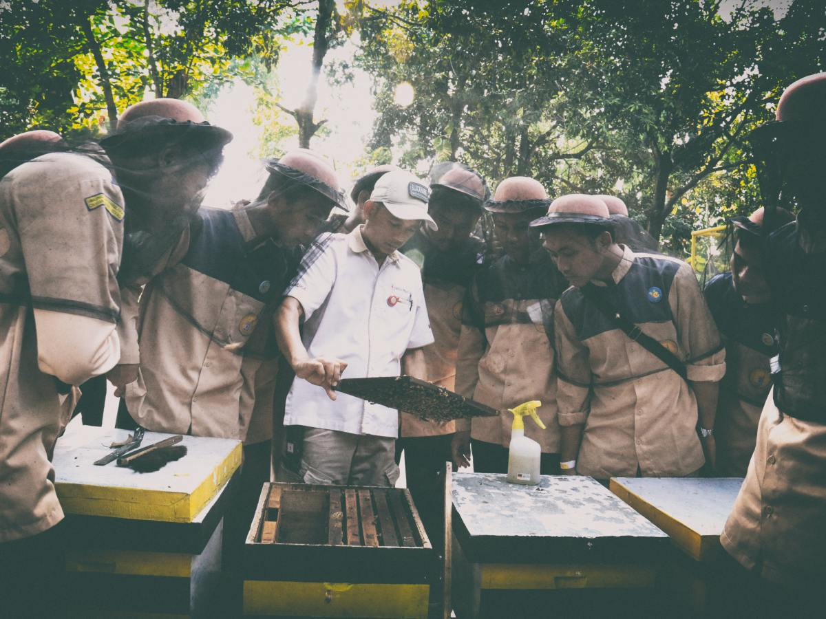 Beekeepers learning together. Photo by Anggi Nurjaman on Unsplash