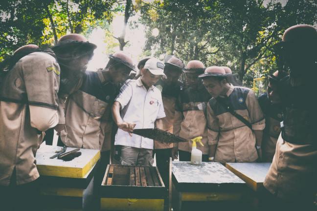 Beekeepers learning together. Photo by Anggi Nurjaman on Unsplash