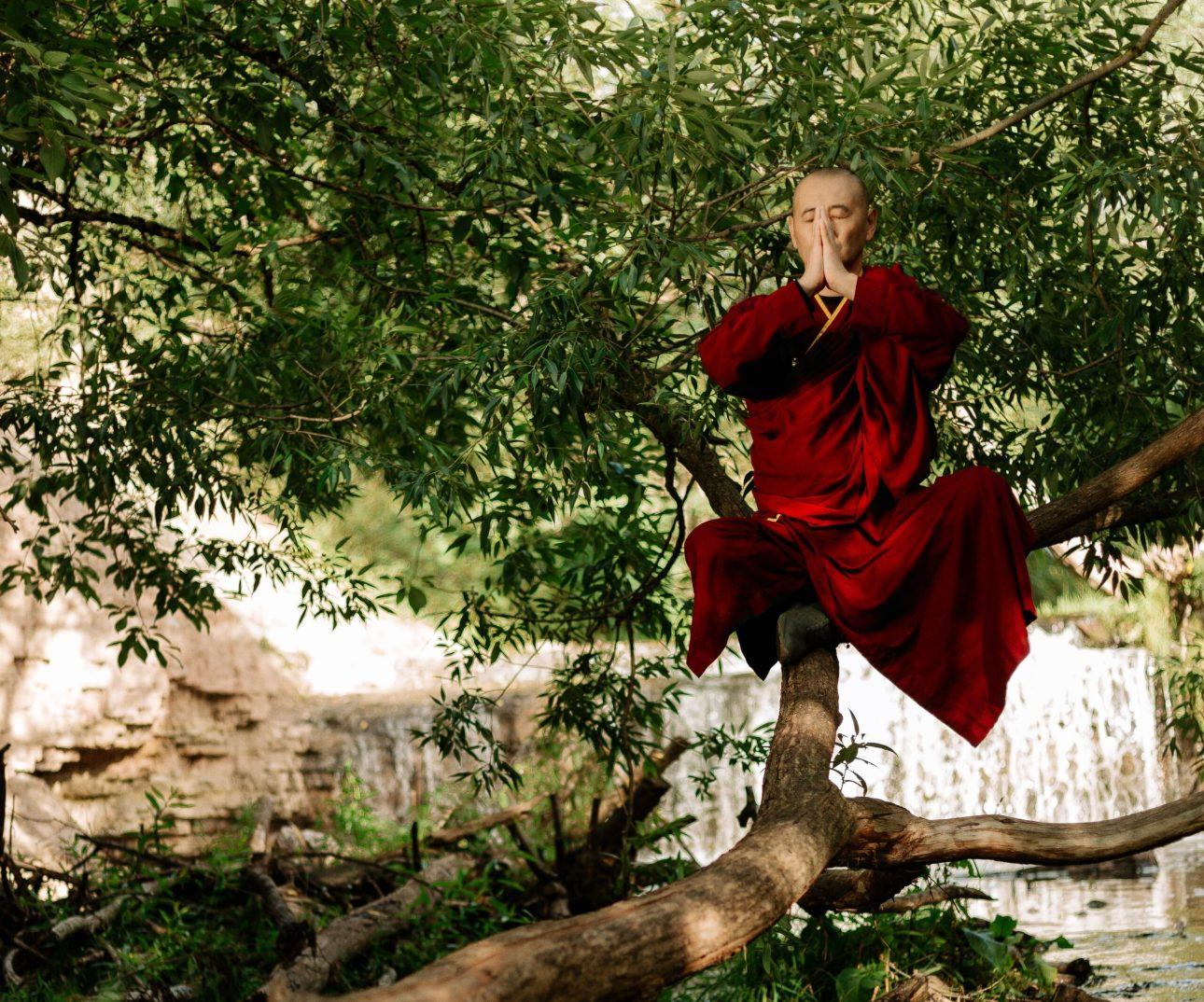 Photo of a monk meditating outdoors on a branch, by cottonbro via Pexels.