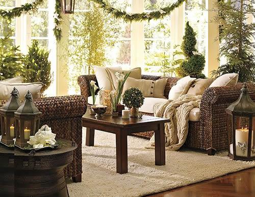 Decorar una Sala de estar con Plantas 3