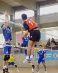 Sannino (5)