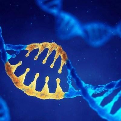 Izolacja RNA