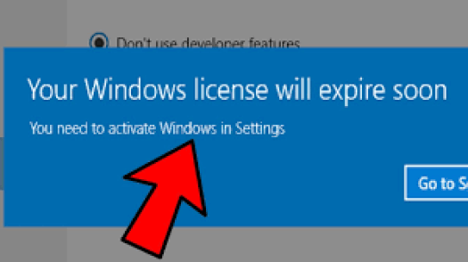 What Is Your Windows License